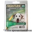 Frontline Plus para cães de 20,1 até 40kg