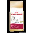 Ração Royal Canin Gatos Persa 1,5kg
