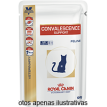 Royal Canin Vet Diet Convalescence S/O Gatos sache 100g