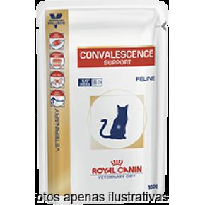 Royal Canin Vet Diet Convalescence S/O Gatos sache 100g