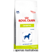 Ração Royal Canin Veterinary Diet Diabetic Cães 1,5kg