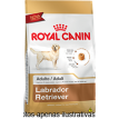 Ração Royal Canin Labrador Adulto 12kg